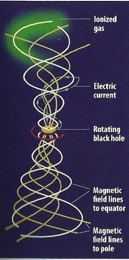 Magnetic Field and Spin