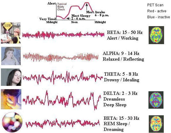 Types of Brain Wave