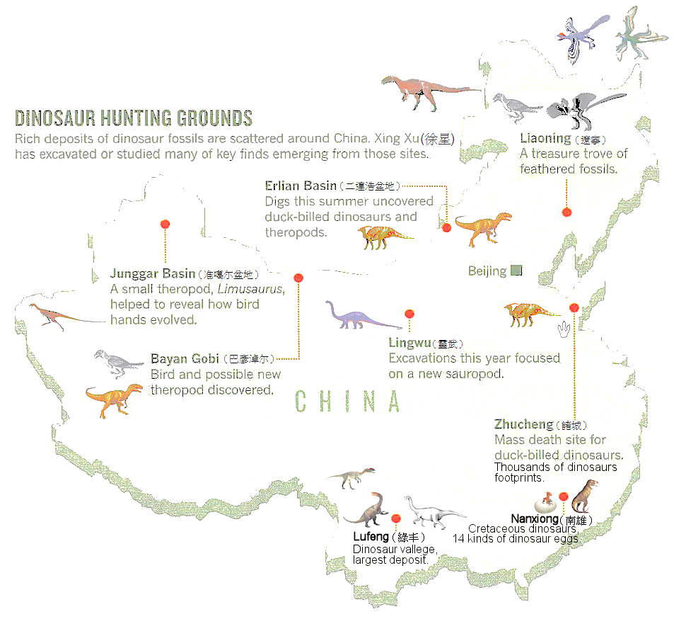 Dinosaurs in China