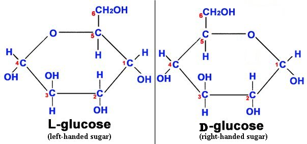 How do D and L glucose look  L Glucose