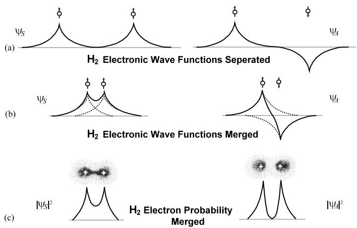 H2 Wave Function