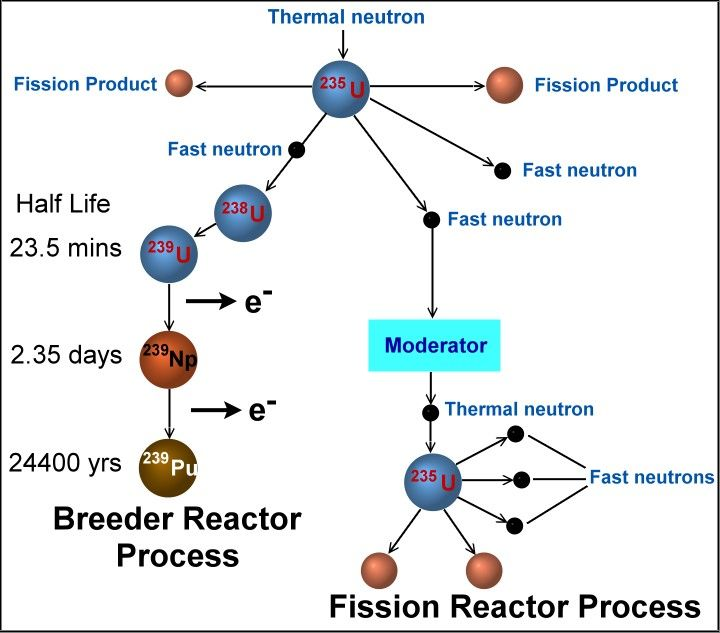 Two Fission Pathways