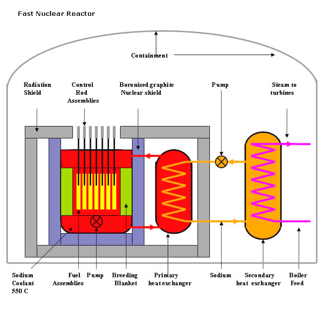 Nuclei fast neutron reactor fbr ccuart Image collections