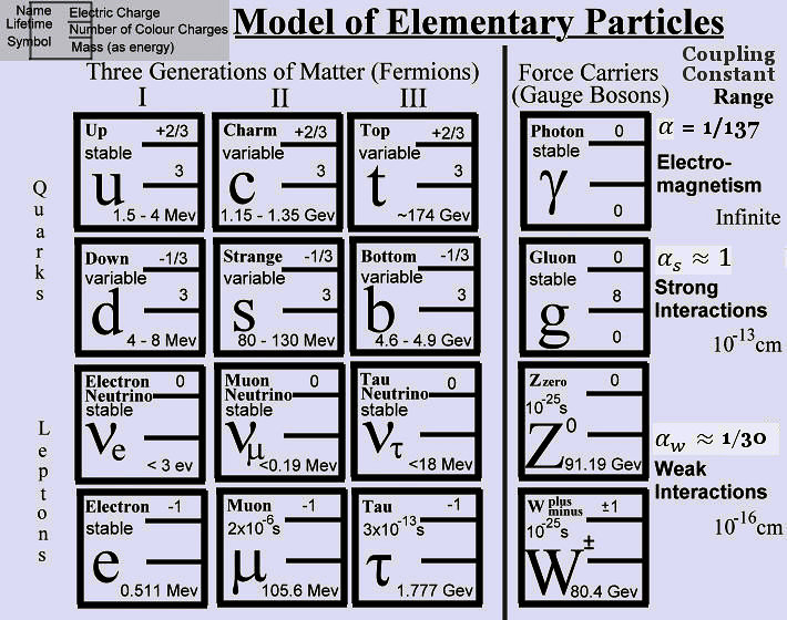 Elementary Particles and the World of Planck Scale
