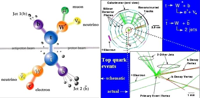 Top Quark Events