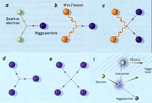higgs field interactions