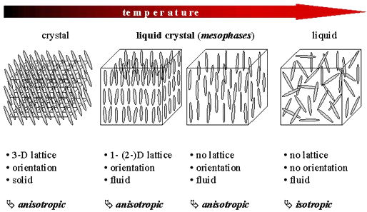 Liquid Crystal Phase