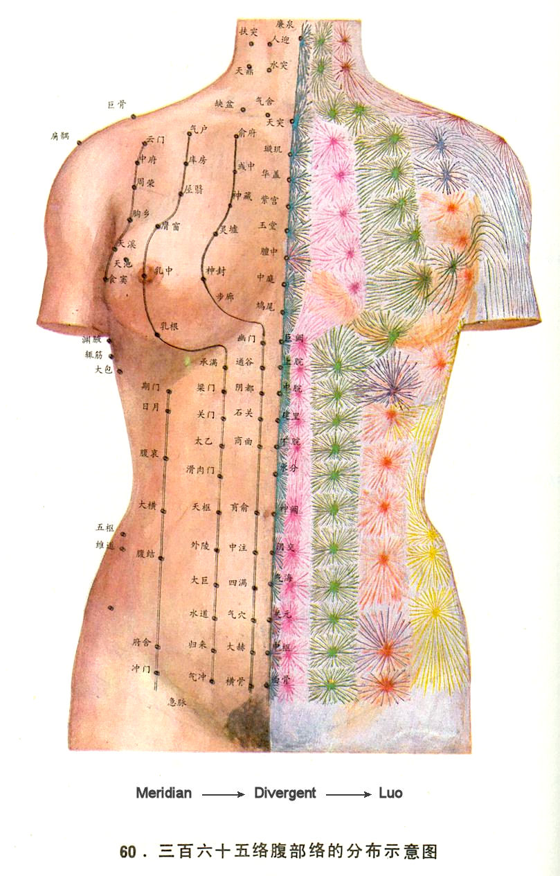 Acupuncture ontime review